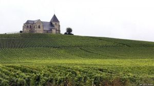 The vineyards in the Champagne region were given heritage status in Saturday's meeting