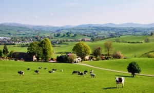 England_countryside_Shutterstock_Kevin Eaves_rs