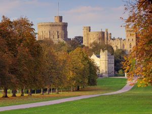 The Long Walk in Autumn, Windsor Castle, England
