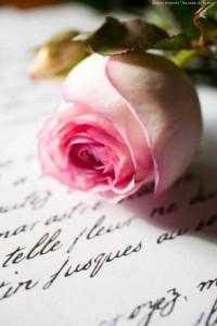 09-poesie-20101-294x441